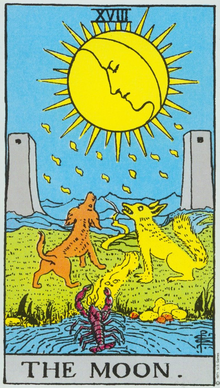 You are currently viewing The Moon – Tarot career